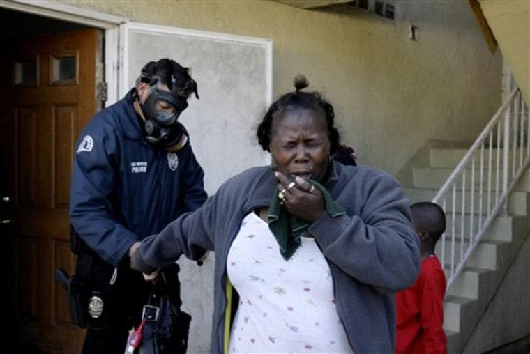 Gang Arrests