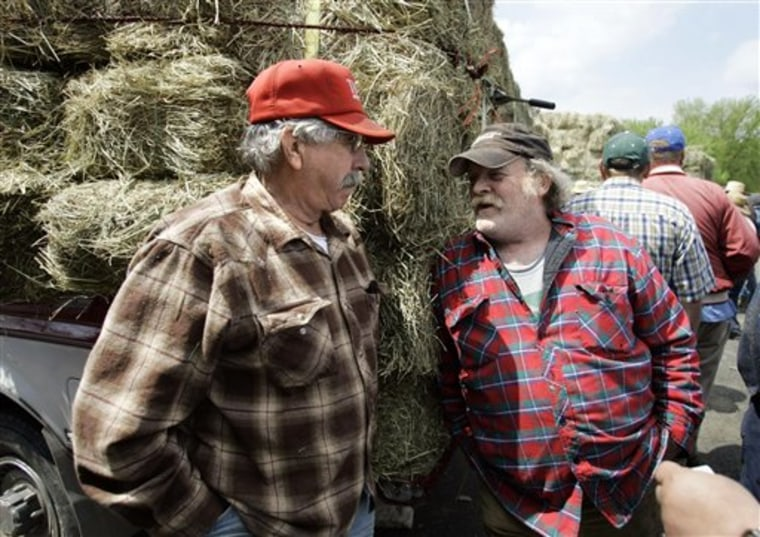 Rural Voters