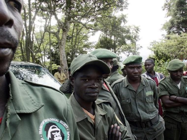 Congo Rangers in the Mist