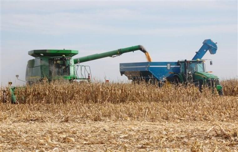 Farm Scene Corn Cob Ethanol