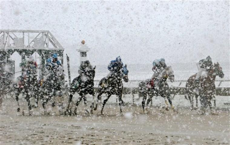 Horse Racing October Snow