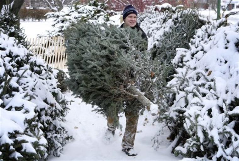 Christmas Tree Blues