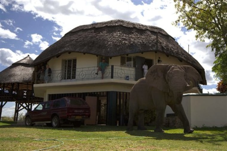 ZIMBABWE TUSKER
