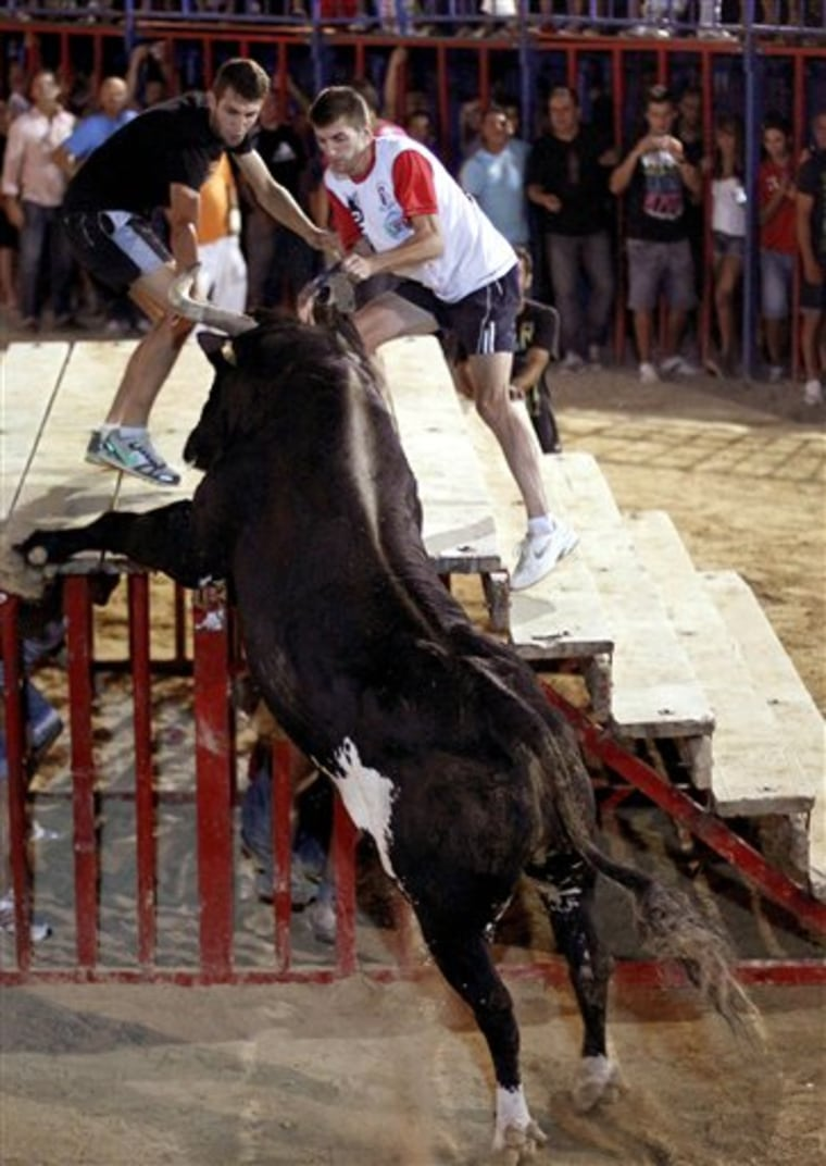 A reveler runs away from 'Raton' the killer bull on Sunday, during a festivity in Sueca, near Valencia, Spain. The hulking beast has killed two people in the arena and injured five others over the years. Nobody was killed this time.