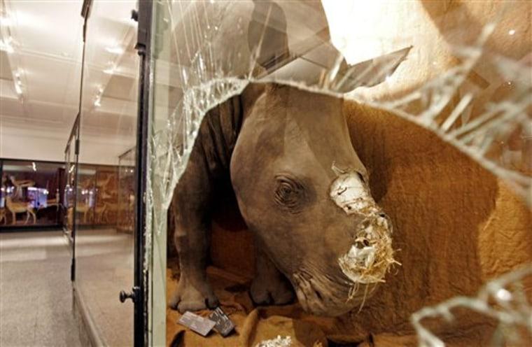South Africa-Rhino Robbery