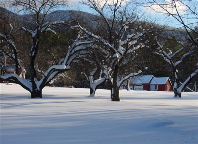 Travel Winter Vacation Home Rentals