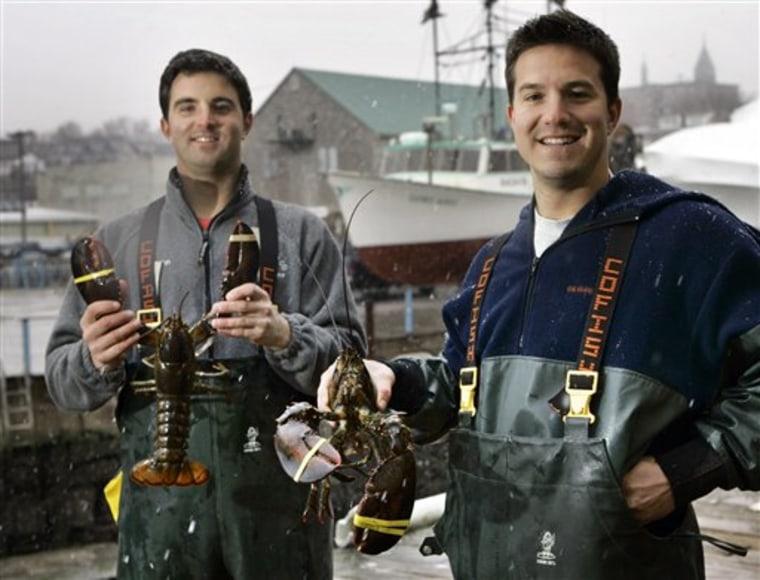 Marketing Lobster