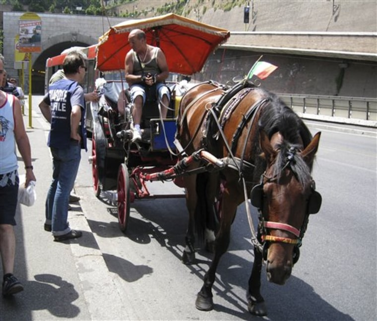 ITALY HORSE CARRIAGES