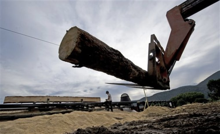 The Politics of Timber