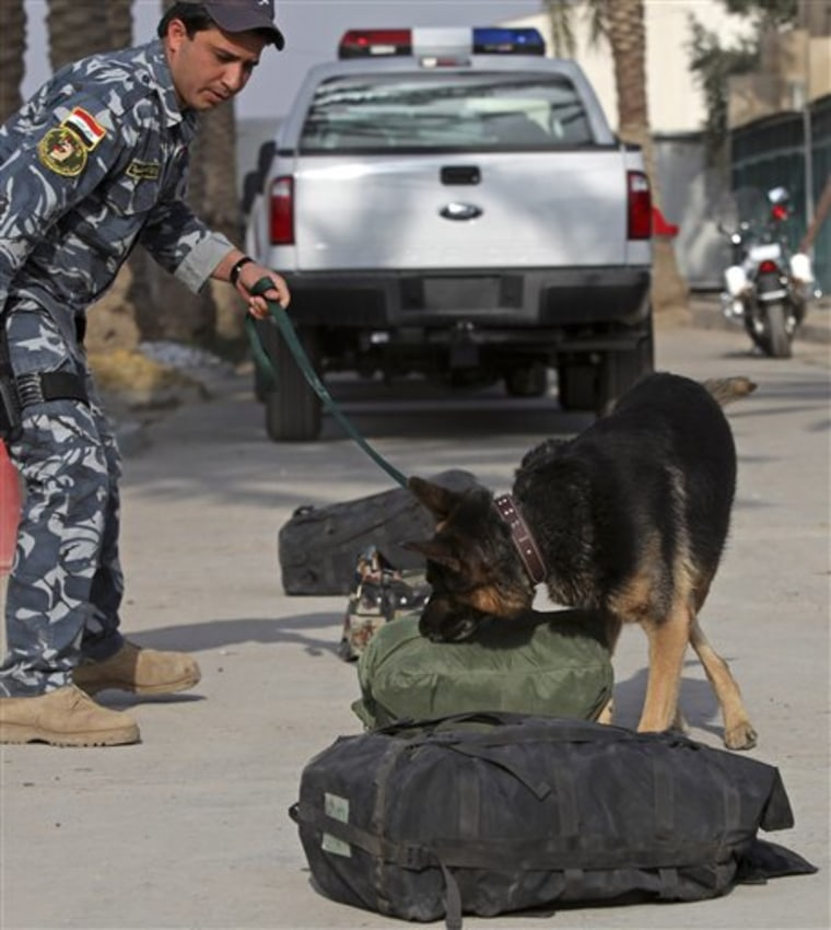 A bomb-sniffing dog trains at the police college in Baghdad, Iraq, on Wednesday.