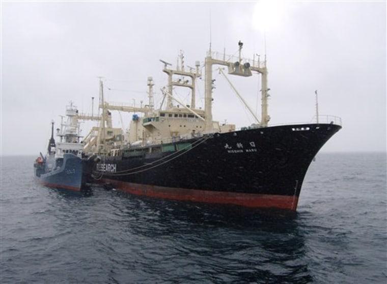 Antarctica Japan Whaling Ship Fire