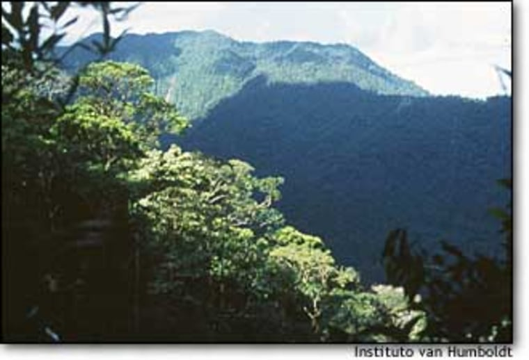 """Indiwasi National Park is located in a heavily forested, mountainous area of the Colombian Amazon basin, on the headwaters of the Fragua River. Indiwasi is an Indian name meaning """"house of the sun."""""""