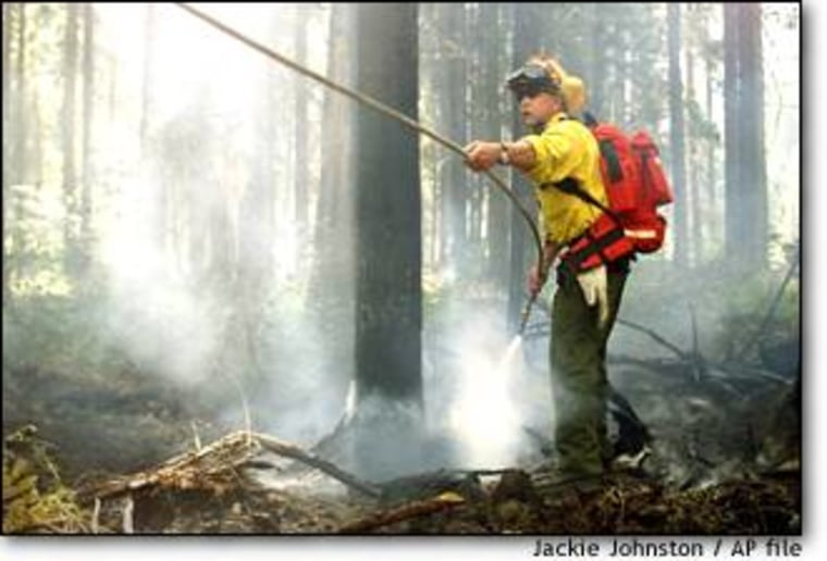 Forest Service officials are trying to come up with a new policy to prevent wildfires like this one, which consumed thousands of acres in the Okanagan-Wenatchee National Forest in Washington state last summer, and killed four firefighters.