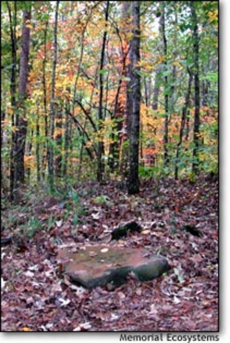 Grave sites are designated by natural, flat stones at Memorial Ecosystems in Westminster, S.C.