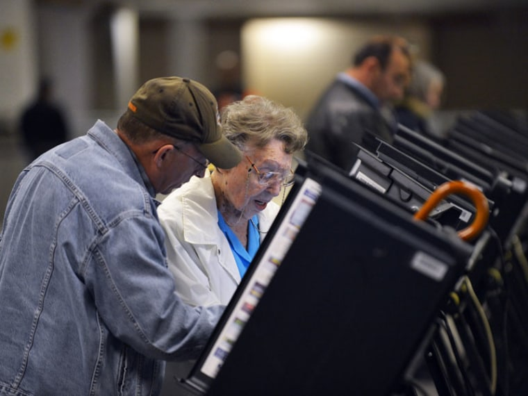 People cast their ballots for the U.S. presidential election.  (Jewel Samad / AFP)