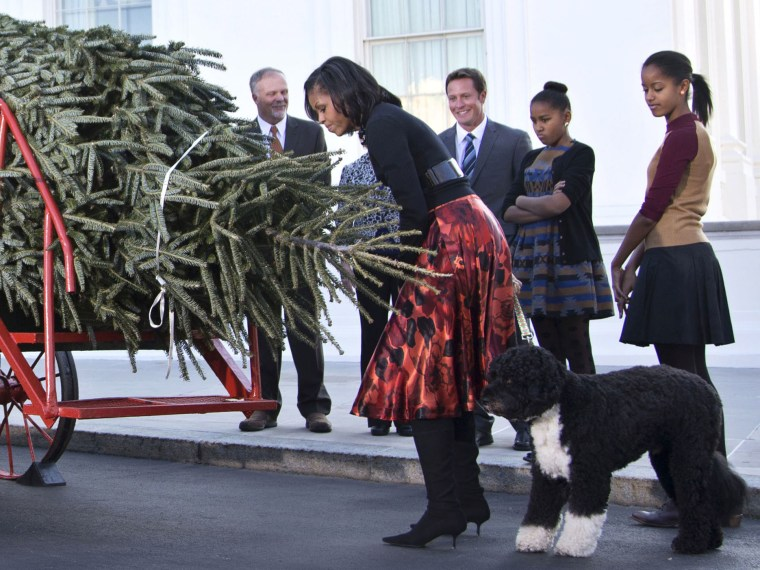 First lady Michelle Obama, accompanied by daughters Sasha, second from right, Malia, right, and first dog Bo, smells the official White House Christmas tree, a 19-foot Fraser Fir from Jefferson, N.C., upon is delivery, Friday, Nov. 23, 2012, at the...