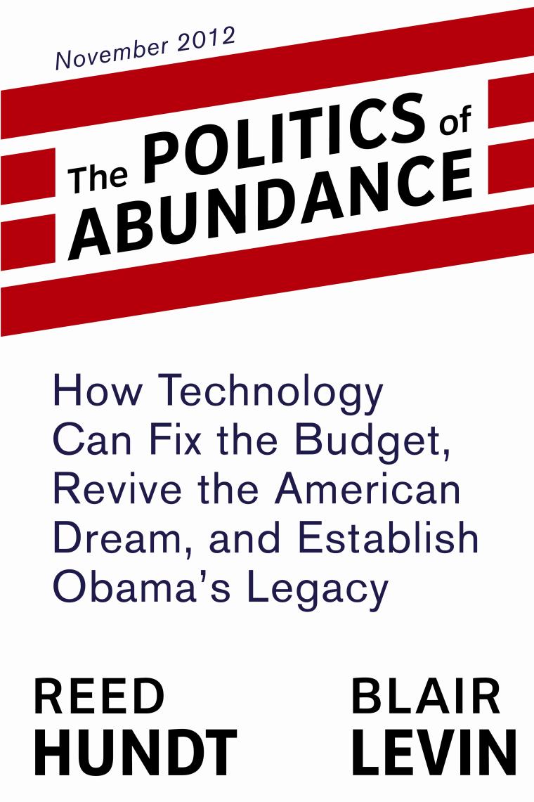 politics of abundance cover