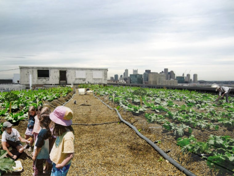 Rendering by Recover Green Roofs, original imagery by Brooklyn Grange Rooftop Farm.(Image by Recover Green Roofs, via Kickstarter)