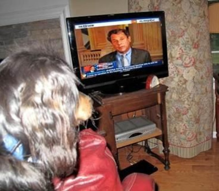 Even the dogs stop to watch 'The ED Show'