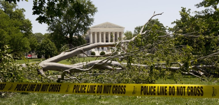 An American beech tree lies on Capitol Hill grounds in Washington, D.C., Saturday, June 30, in front of the U.S. Supreme Court after a powerful storm swept across the region late Friday. Violent storms moved across the eastern U.S., killing at least...