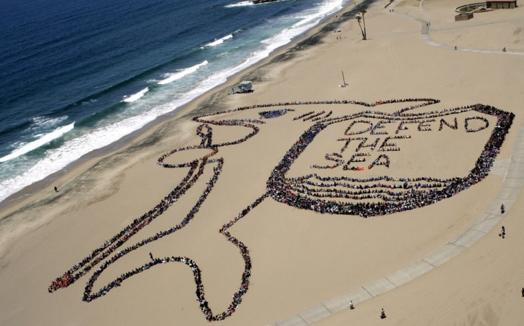 """LOS ANGELES, CA - JUNE 7: More than 5,000 Los Angeles kids, teachers, and volunteers form the shape of a shark and shield that reads """"Defend the Sea"""" in a bid to 'shield' the ocean from trash as part of the 19th annual Kids Ocean Day Adopt-A-Beach..."""