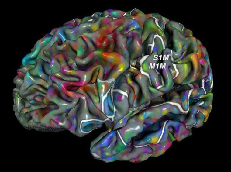 This is your brain on semantic groupings