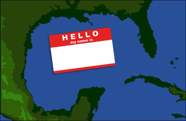Gulf of Mexico, rebranding challenge winners