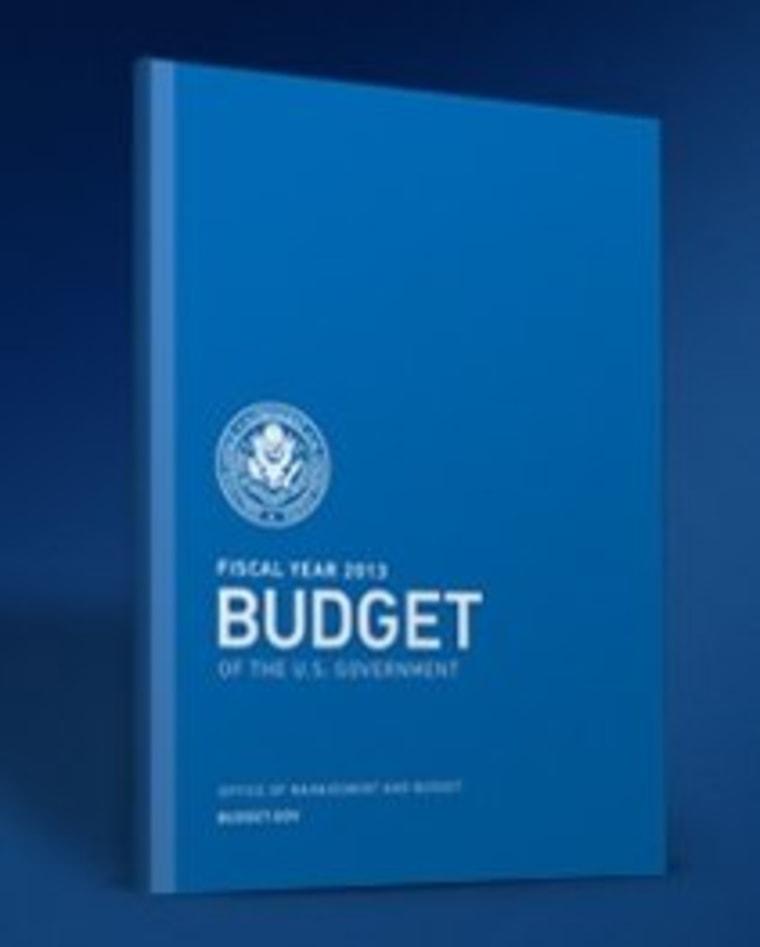 White House unveils budget plan