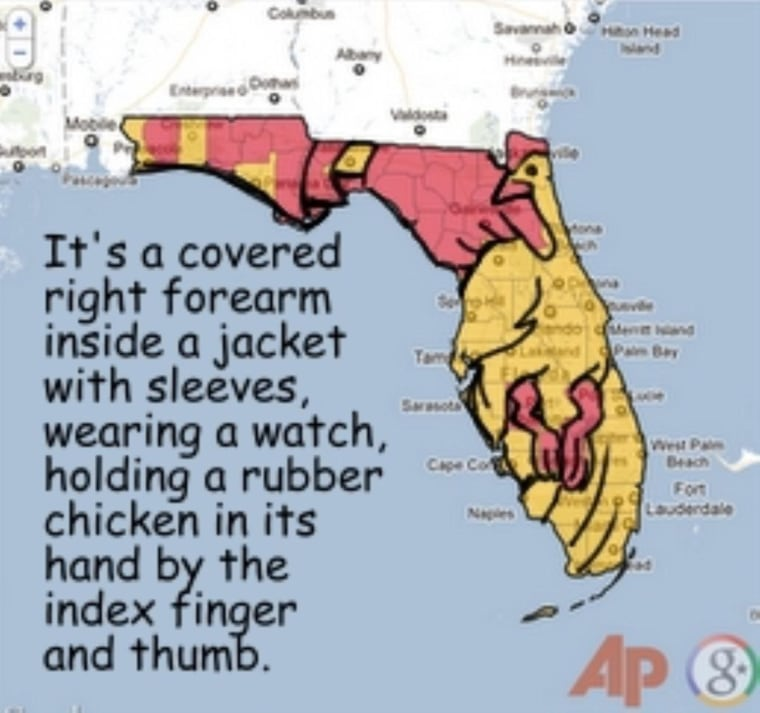 MaddowBlog readers' psyches exposed! Florida Rorschach results!