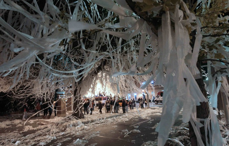 The trees at Toomer's Corner in Auburn, Ala., are adorned with thousands of rolls of toilet paper Sunday, Dec. 5, 2010 following a 56-17 win over South Carolina in the Southeastern Conference Championship NCAA college football game.