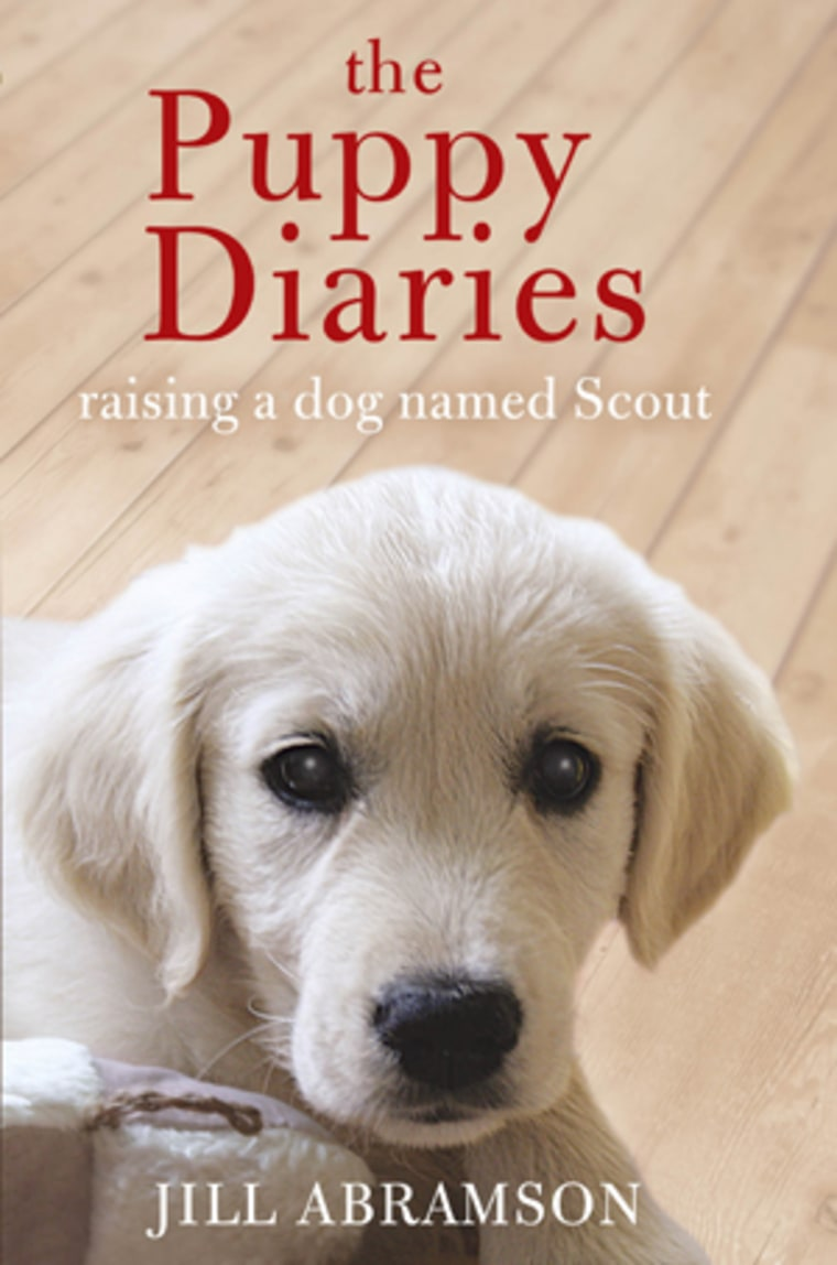 """An excerpt from Jill Abramson's \""""The Puppy Diaries: Raising a Dog Named Scout\"""""""