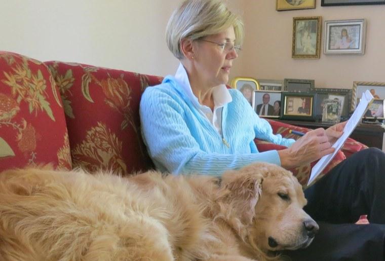 """Elizabeth Warren prepares for her debate with Sen. Scott Brown with her dog \""""Otis\"""""""