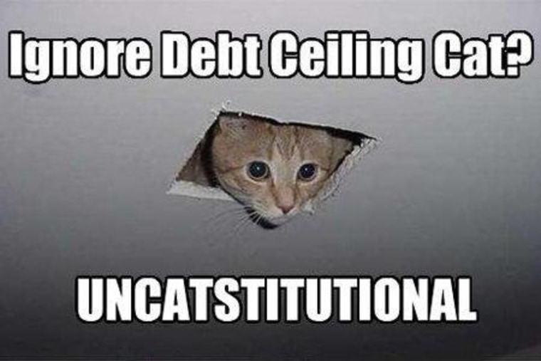 Debt Ceiling Cat has all eyes on you, Congress.
