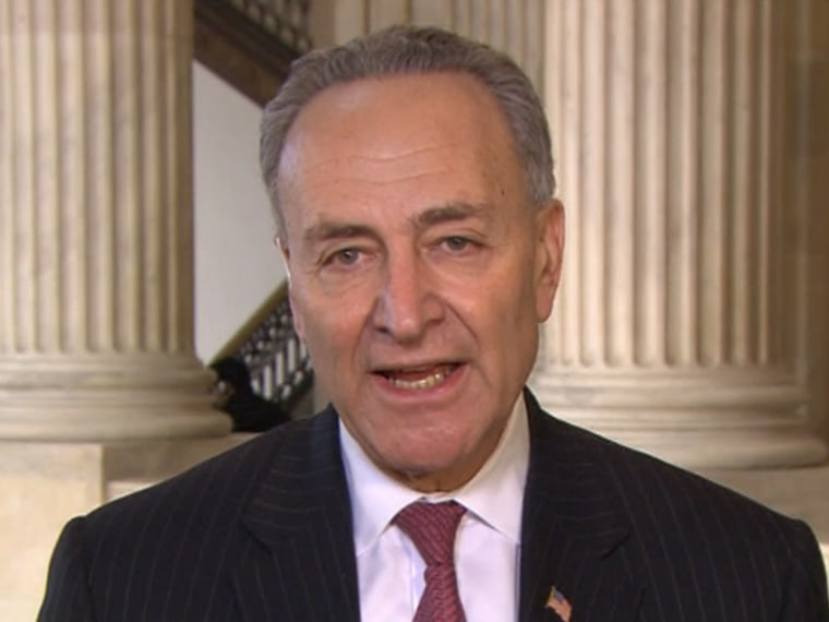 Sen. Chuck Schumer, D-N.Y., during an appearance on Andrea Mitchell Reports.