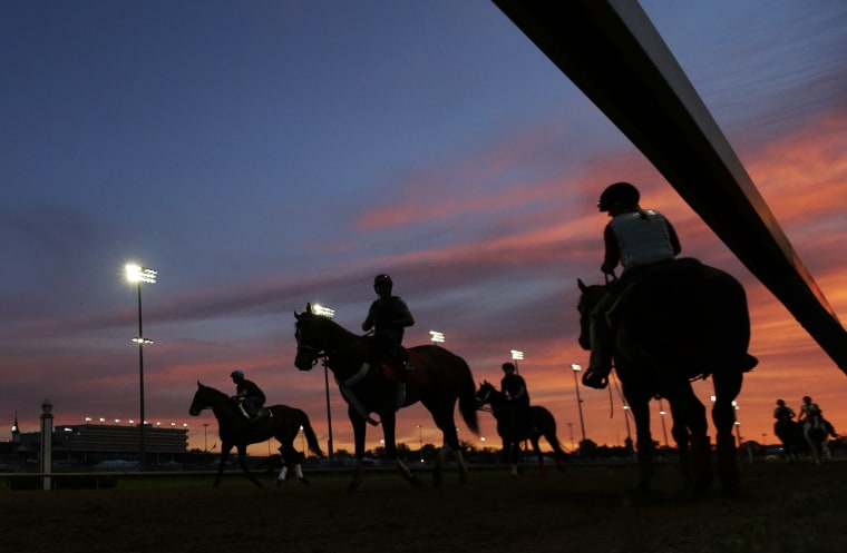 Horses get ready for their morning workouts at Churchill Downs Thursday, May 2, 2013, in Louisville, Ky. (AP Photo/Charlie Riedel)
