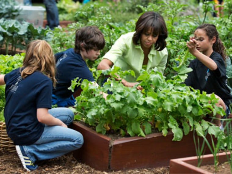 First lady Michelle Obama joins school children to harvest the summer crop from the White House kitchen garden on May 28, 2013 (Photo by Manuel Balce Ceneta/AP)
