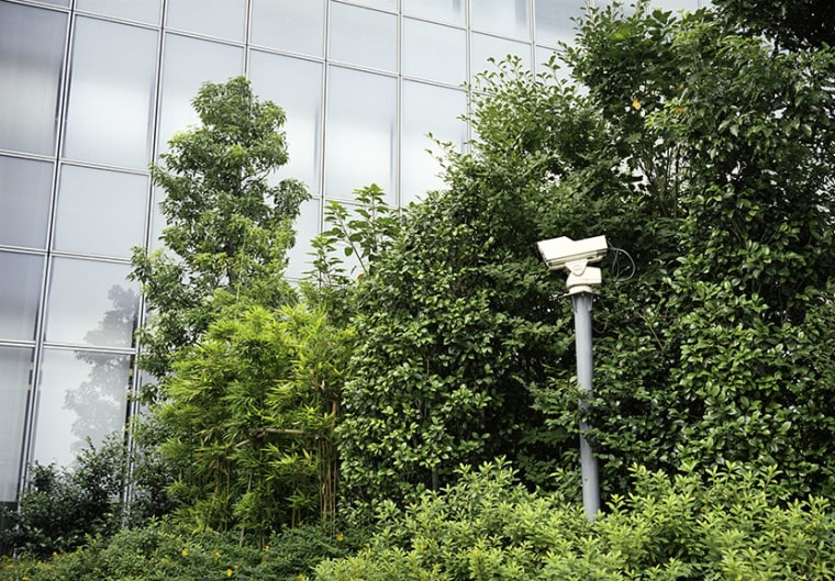 Surveillance camera in trees pointed near architectural glass facade. (Photo by Abban Ryan/Gallery Stock)
