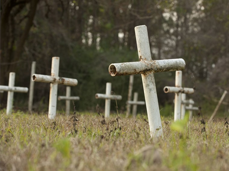 White metal crosses mark graves at the cemetery of the former Arthur G. Dozier School for Boys in Marianna, Florida, December 10, 2012. (Photo by Michael Spooneybarger/Reuters)
