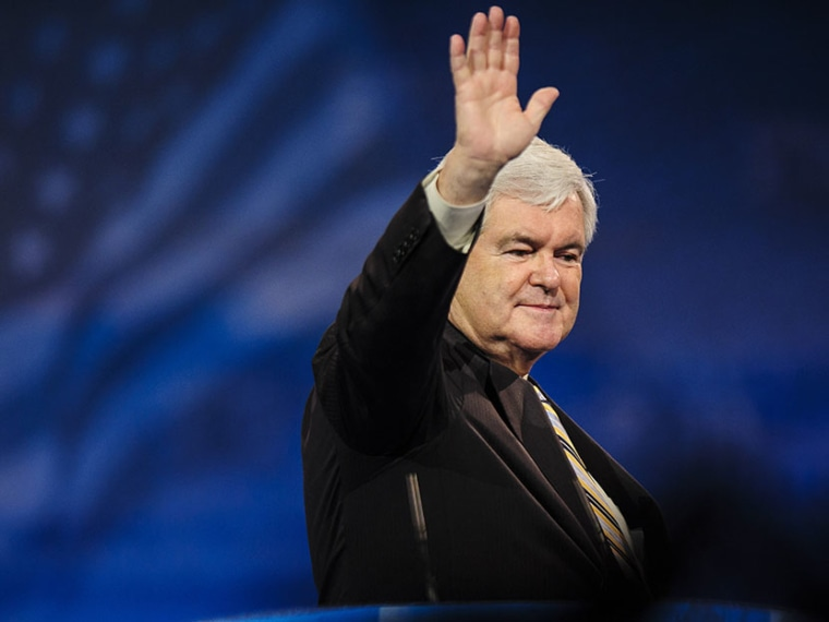 Newt Gingrich, former presidential candidate and Speaker of the U.S. House of Representatives, speaks at the 2013 Conservative Political Action Conference (CPAC) March 16, 2013 in National Harbor, Maryland. (Photo by Pete Marovich/Getty Images)
