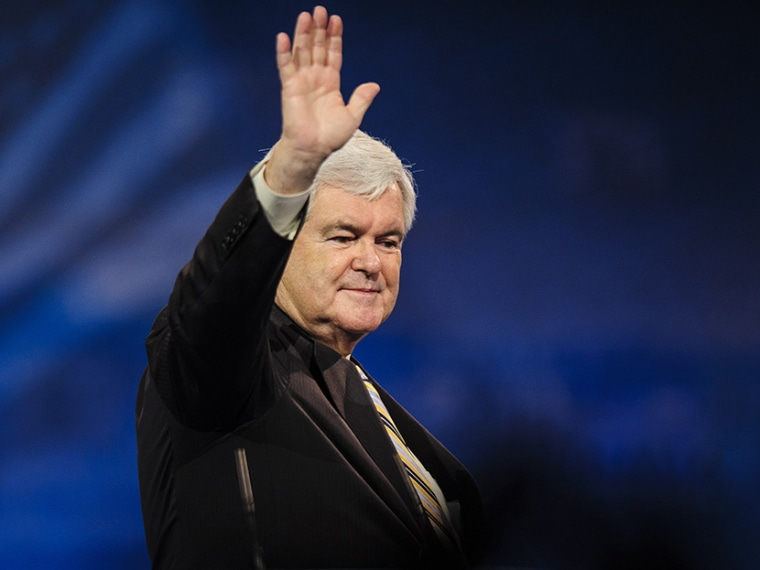 Newt Gingrich, former presidential candidate and Speaker of the U.S. House of Representatives, speaks at the 2013 Conservative Political Action Conference March 16, 2013 in National Harbor, Maryland. (Photo by Pete Marovich/Getty)