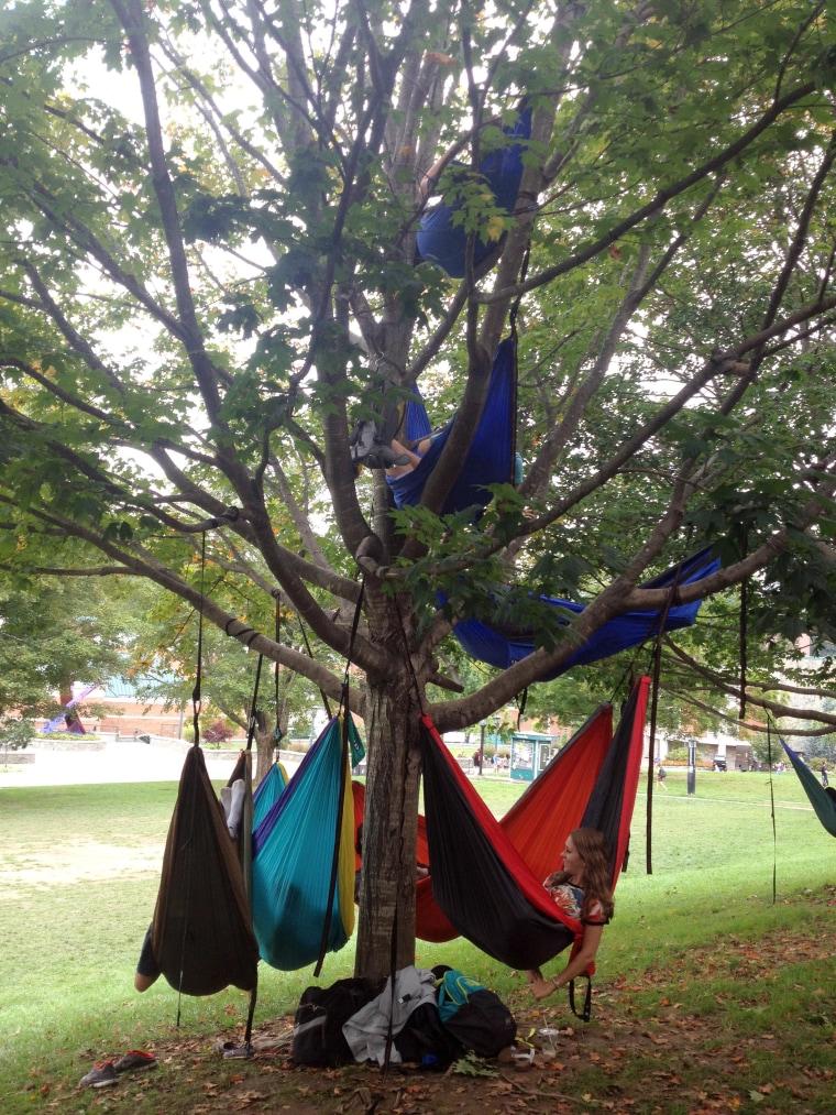 They call it 'hammocking'