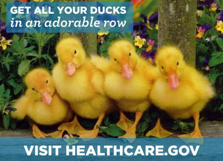 Baby Ducks Adorable Care Act