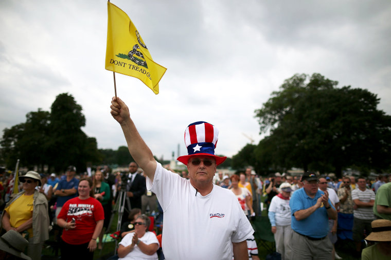 Al Teague of Myrtle Beach, SC. holds a flag while attending a Tea Party rally in front of the U.S. Capitol, June 17, 2013 in Washington, DC.