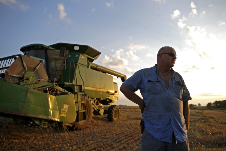 Farmer Jim Schielein stands by is combine after a day of harvesting soft red winter wheat in Dixon, Illinois