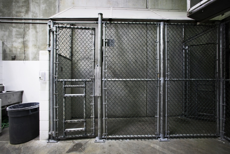 A holding pen used to transfer prisoners is seen at Guantanamo Bay, March 5, 2013.