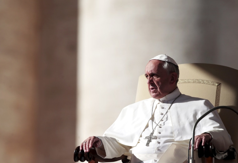 Pope Francis attends his Wednesday general audience, Nov. 6, 2013.