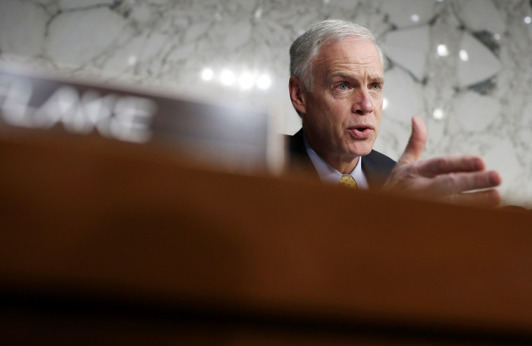 Sen. Ron Johnson speaks during a hearing in the Hart Senate Office Building on Capitol Hill on Jan 24, 2013 in Washington, DC.