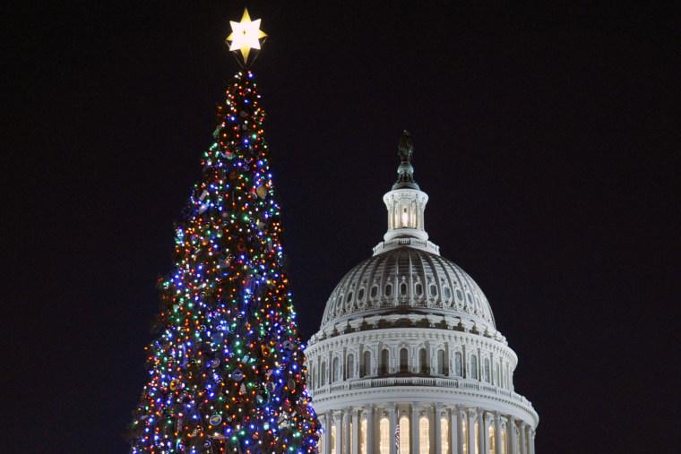 The 2013 U.S. Capitol Christmas Tree, Washington D.C.