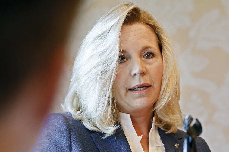 Wyoming Senate candidate Liz Cheney answers a question from a reporter at a news conference, July 17, 2013.