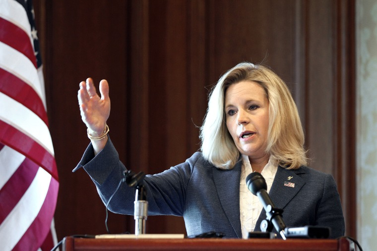 Wyoming Senate candidate Liz Cheney holds a news conference at the Little America Hotel and Resort in Cheyenne, Wyoming on July 17, 2013.